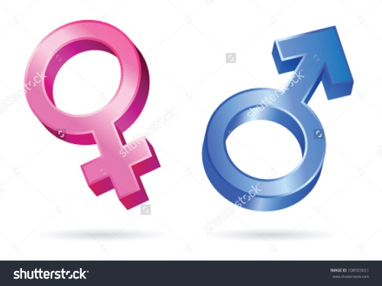 stock-vector-isolated-illustrations-of-male-and-female-gender-symbols-108503651